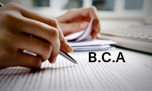 Bachelor of Computer Application (BCA)_pic